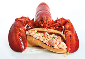 Lobster and lobster roll